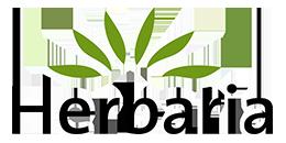 Herbaria Logo