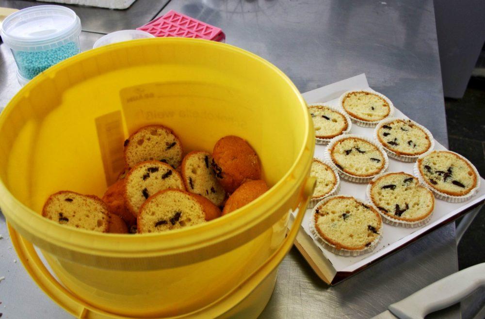 Muffinköpfe